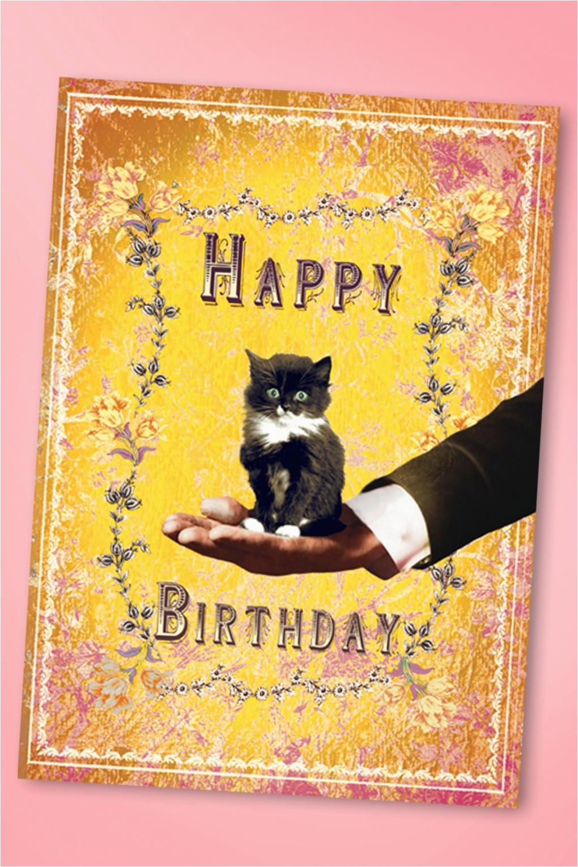 50s sweet kitten happy birthday greeting card