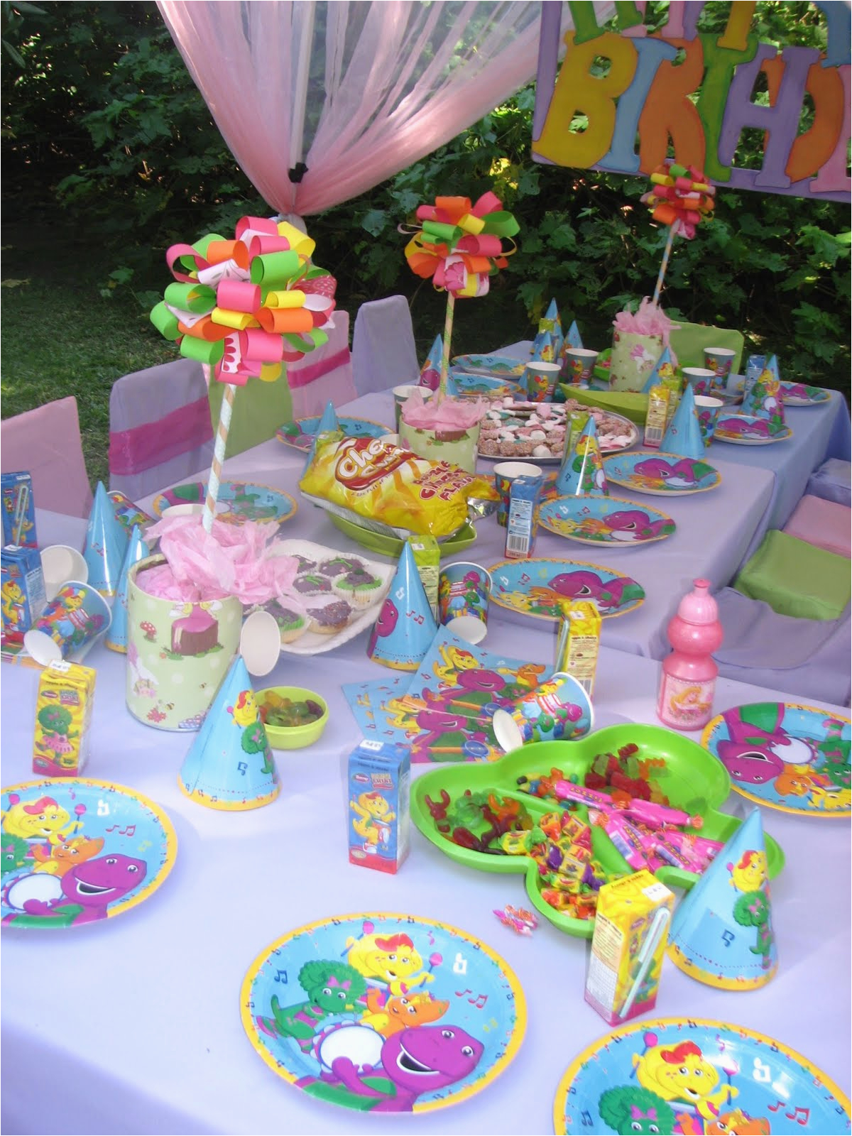 barney party for ella rose xxx