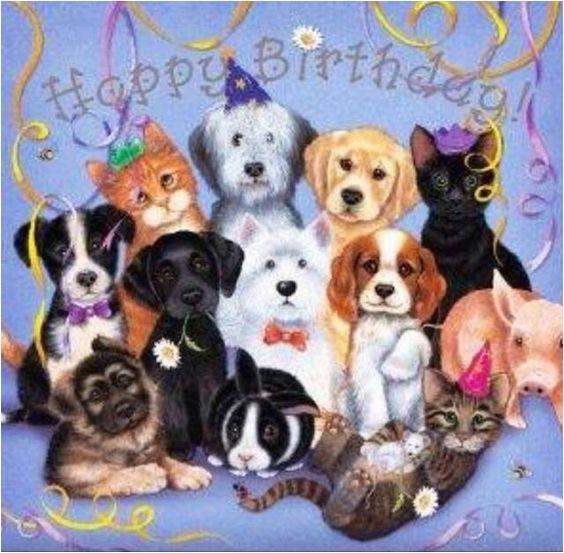 happy birthday dog friends