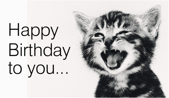 free singing cat ecard email free personalized birthday