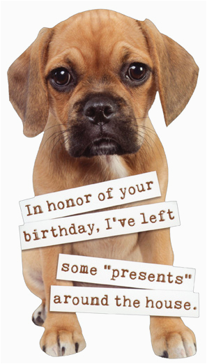 Birthday Cards With Dogs On Them Puggle Puppy Die Cut Funny Dog Card By Paper