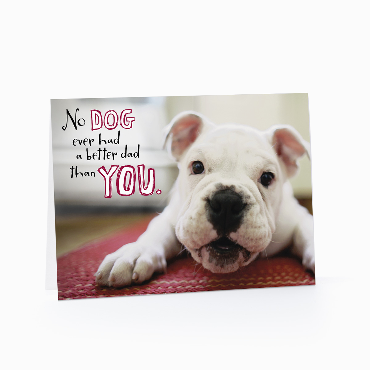 Birthday Cards With Dogs On Them The Gallery For Gt Card