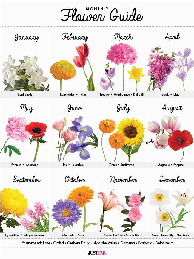 June Birth Flower Tattoos Tattoos Gallery
