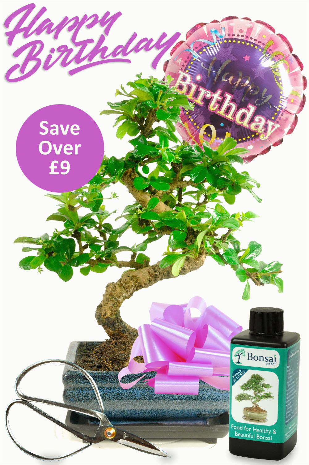 flowering bonsai birthday kit for her with free delivery