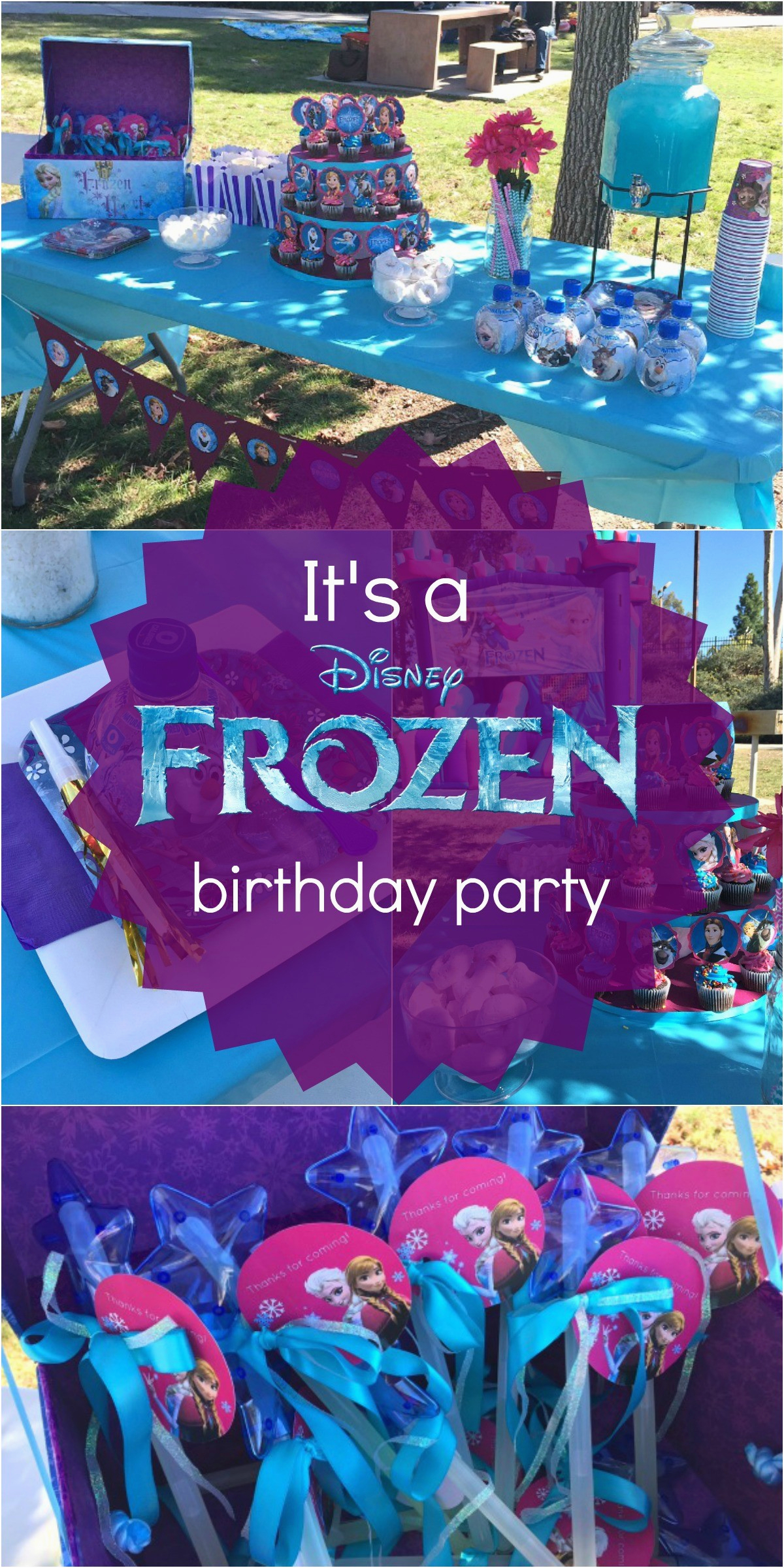 Blue And Purple Birthday Decorations Disney 39 S Frozen Party Ideas Pink