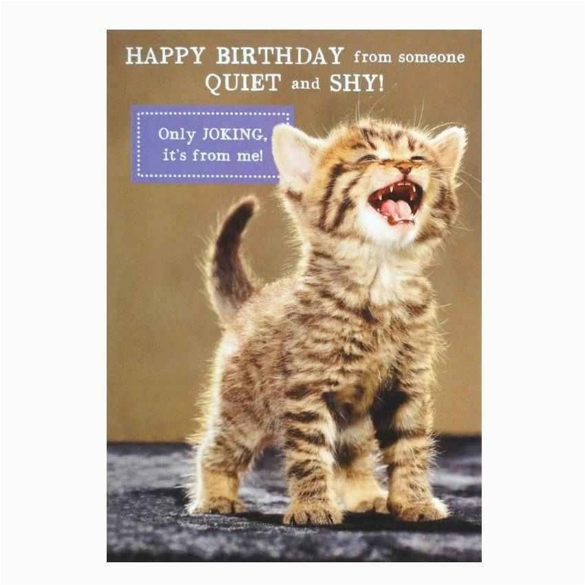 cat birthday greeting images