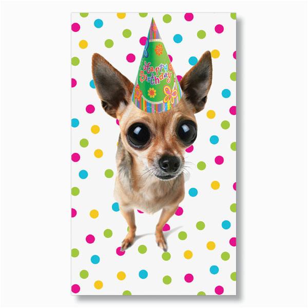 Chihuahua Birthday Cards Chihuahua Birthday Cards