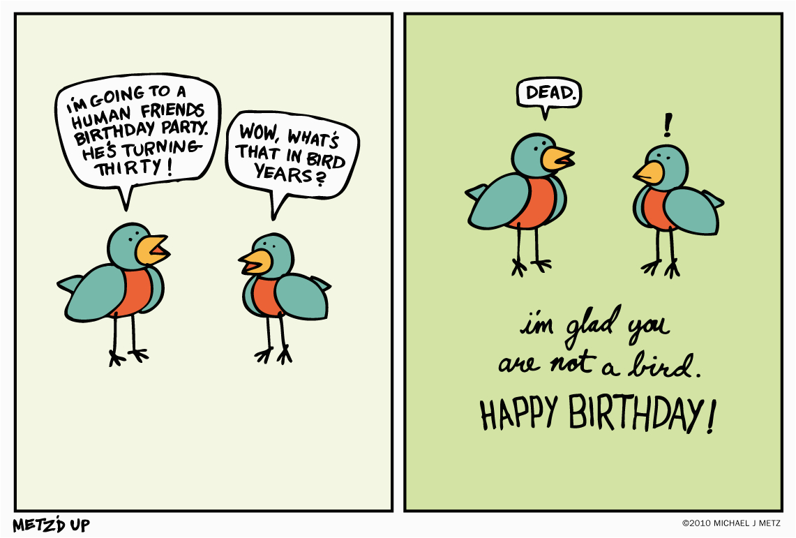 the gallery for gt funny birthday pictures tumblr