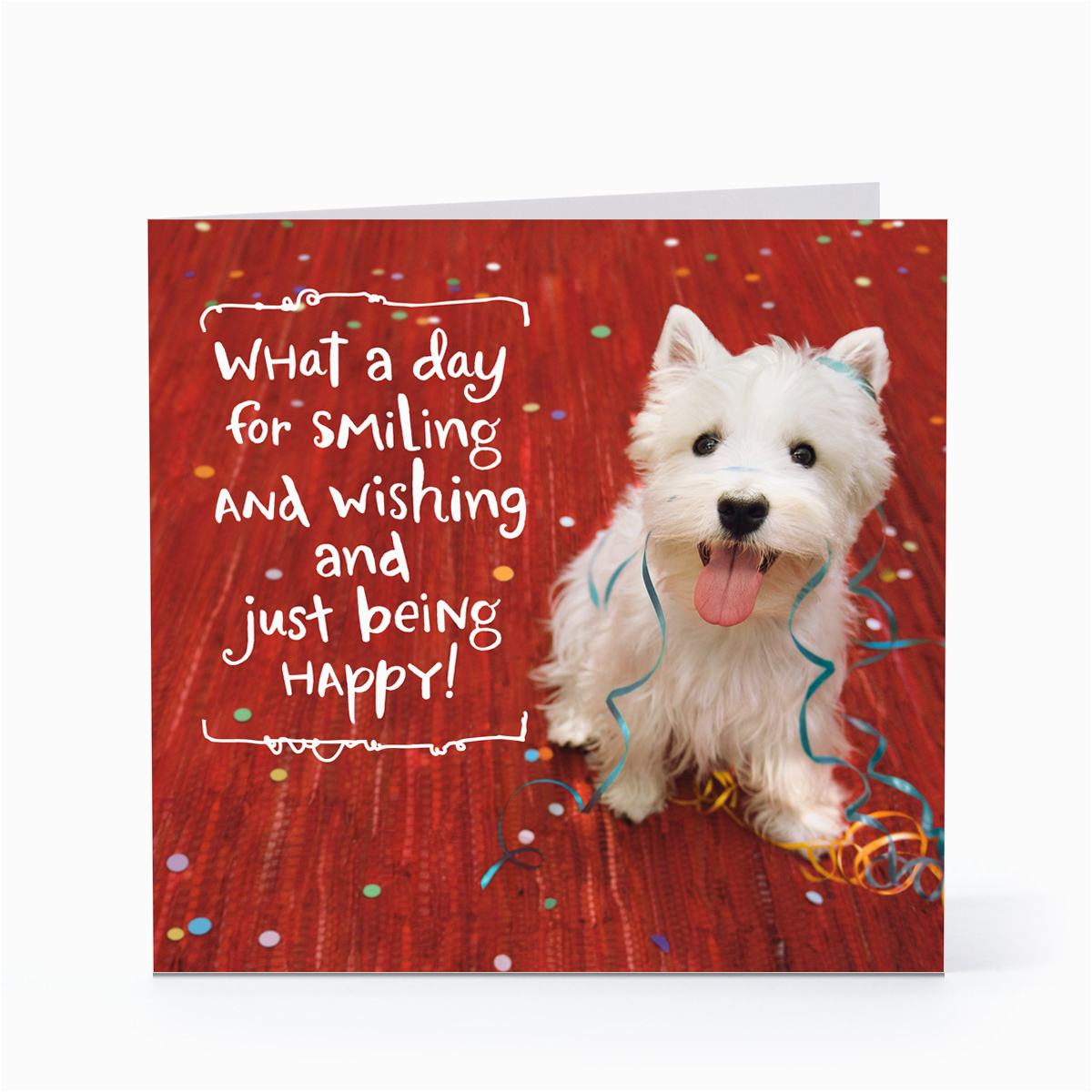 smiling happy dog birthday cards hallmark card pictures