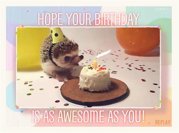 9 free animated birthday cards editable psd ai vector