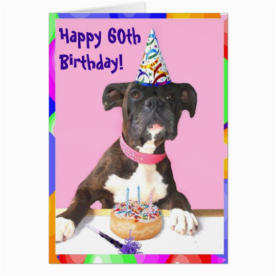 Free Happy 60th Birthday Cards Boxer Greeting Card Zazzle Co Uk