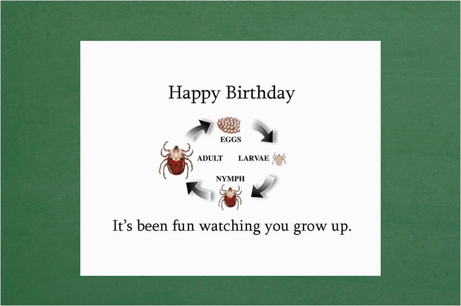 birthday card 17th birthday card 16th birthday card 15th
