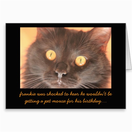 funny shocked cat birthday card wishes zazzle images of