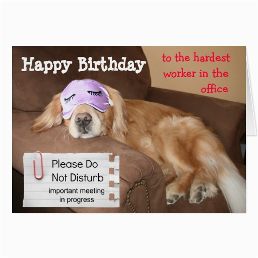 Funny Coworker Birthday Cards Funny Co Worker Birthday Quotes Quotesgram