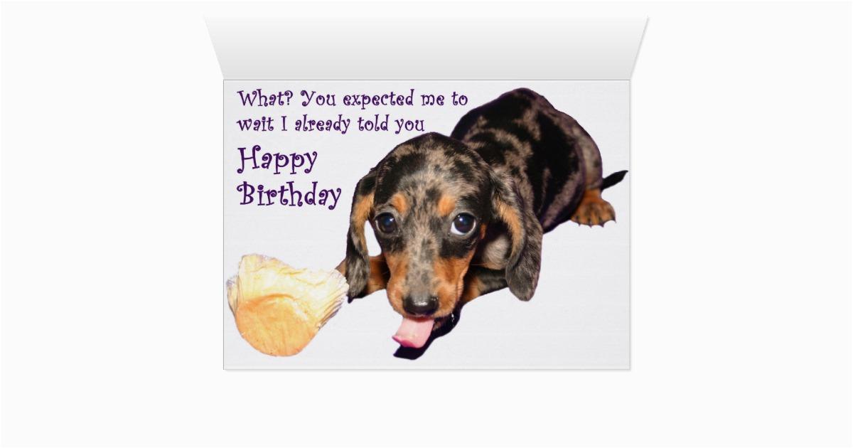 Funny Dachshund Birthday Cards Card Zazzle