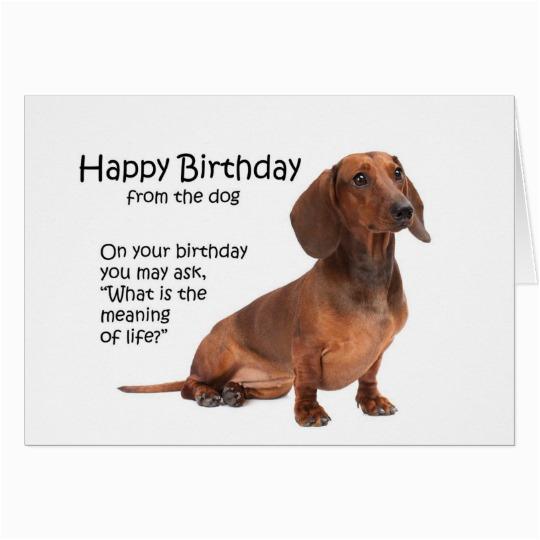 funny dachshund birthday card 137539949697699398
