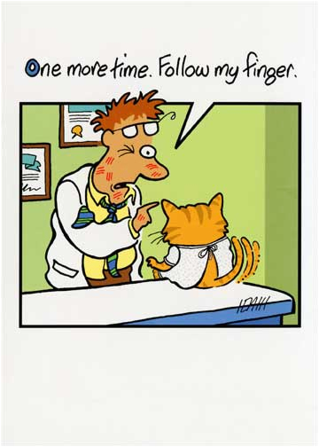 cat at doctor funny birthday card greeting card by