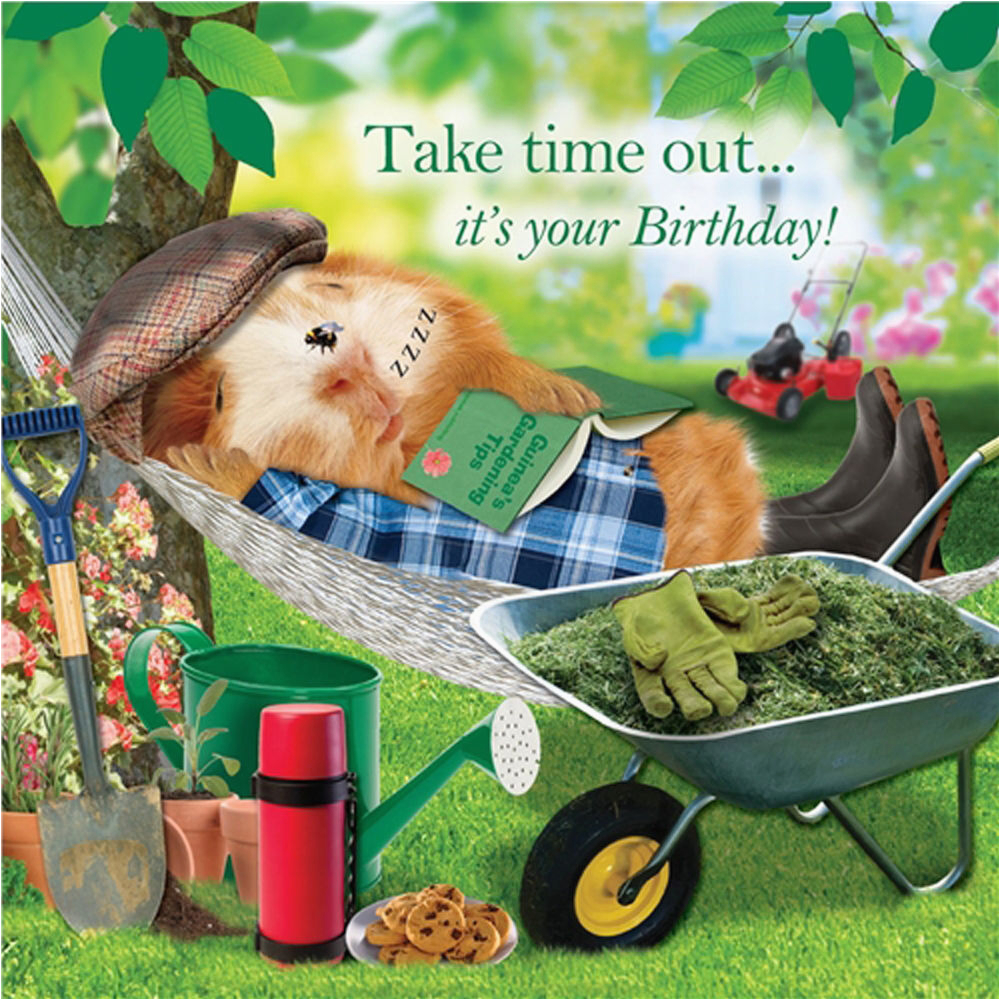 garden hammock funny birthday card afternoon snooze guinea