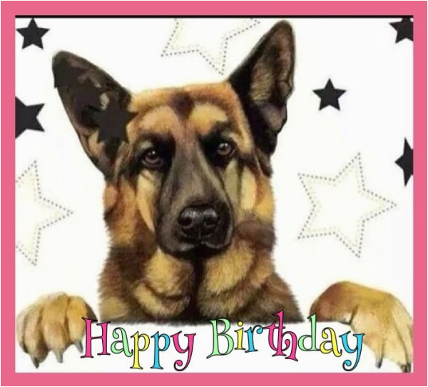 happy birthday wishes with german shepherd