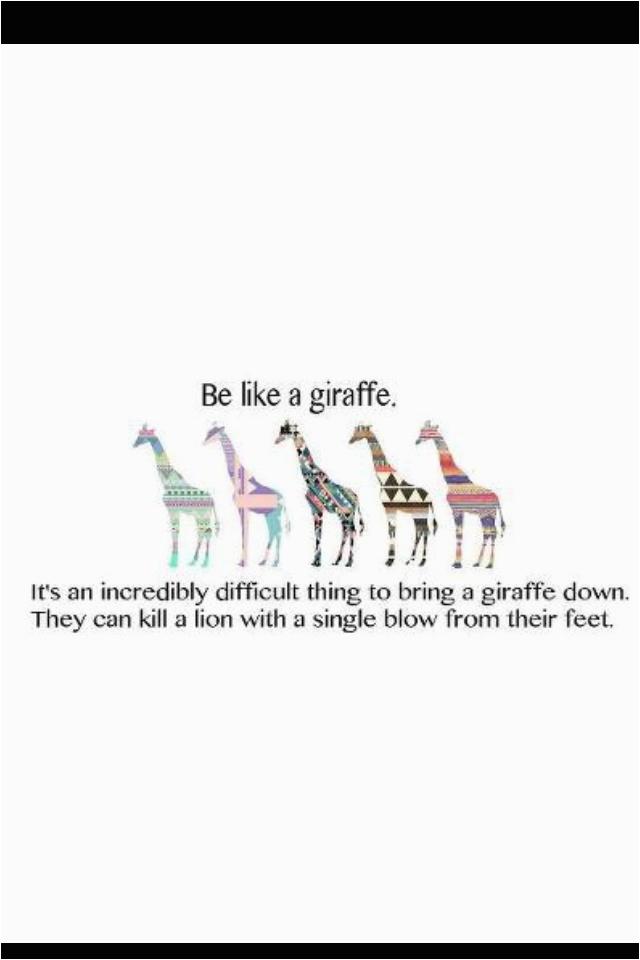 giraffe birthday card sayings giraffe quotes funny sayings 12