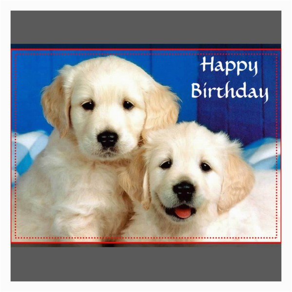 happy birthday wishes with golden retriever