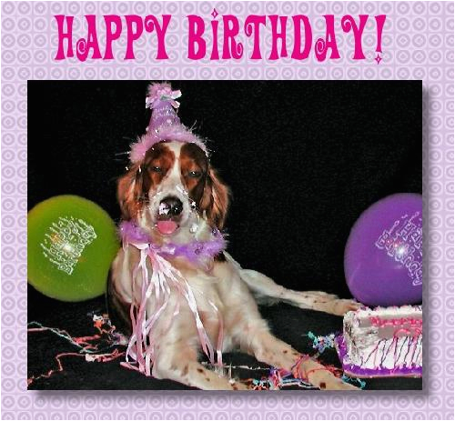 Happy Birthday Cards Dog Lovers For