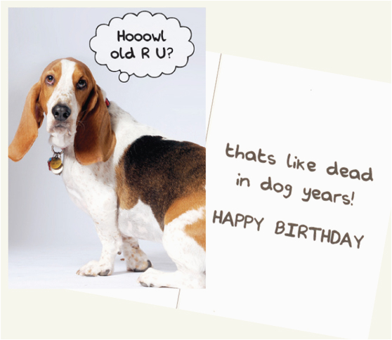 Happy Birthday Cards Dog Lovers Howl Old Are You Greeting Card