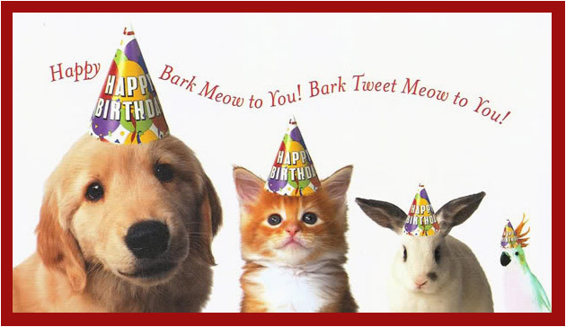 Happy Birthday Cards For Dogs Quotes Quotesgram
