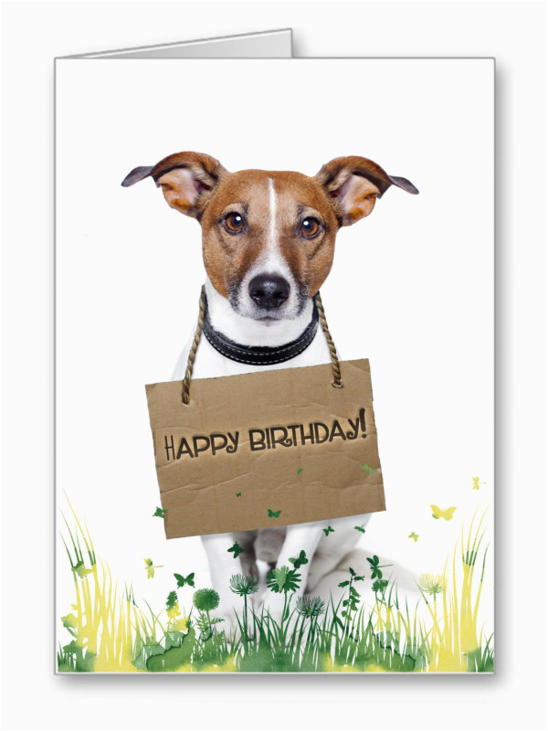 Happy Birthday Cards For Dogs Wishes With Dog Page 9