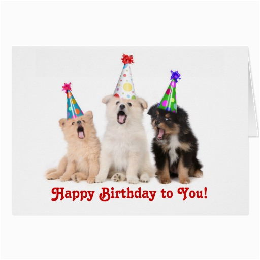 Happy Birthday Cards That Sing Singing Quotes