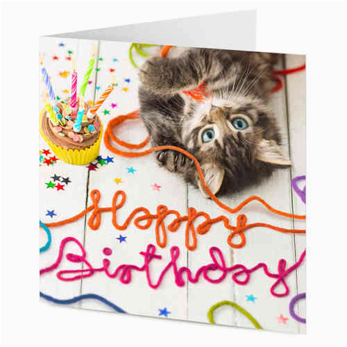 Happy Birthday Cards With Cats Wishes Cat Page 3