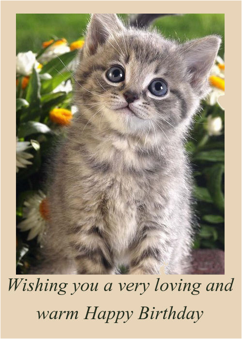 Happy Birthday Cards With Cats Wishes Kittens