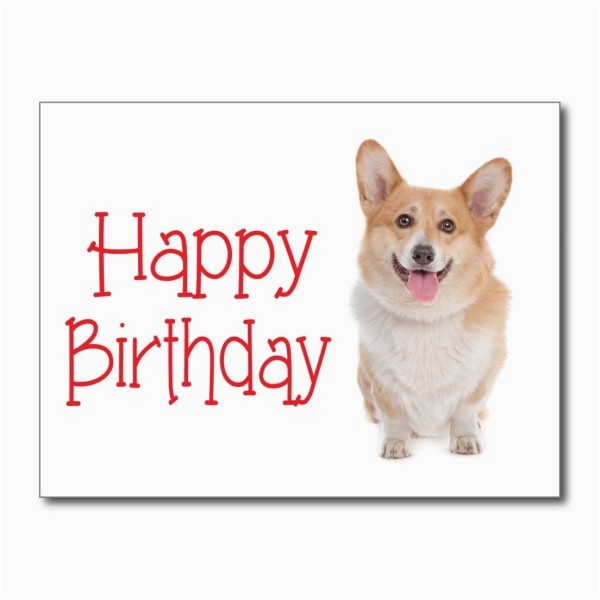 Happy Birthday Cards With Dogs Wishes Dog Page 10