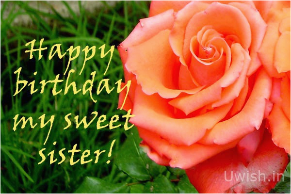 happy birthday my sweet sister with rose uwish wishes