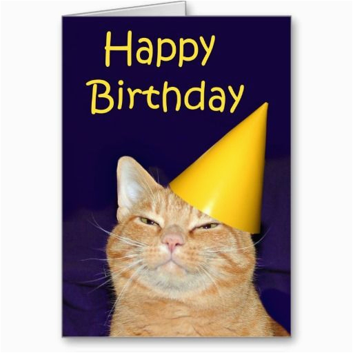 Happy Birthday From the Cat Card 17 Best Images About Cat Birthday Cards On Pinterest
