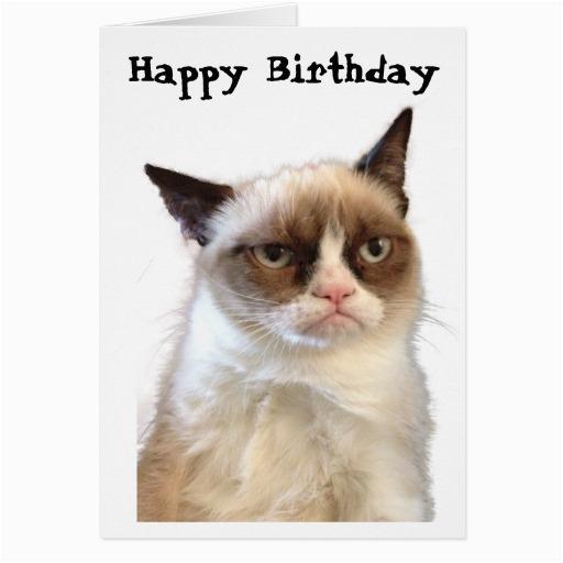 grumpy cat happy birthday card 137543851202488312