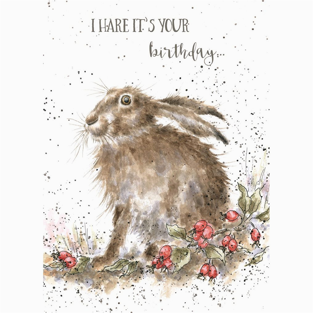 Hare Birthday Cards I Hare Card Wrendale Designs by Hannah Dale