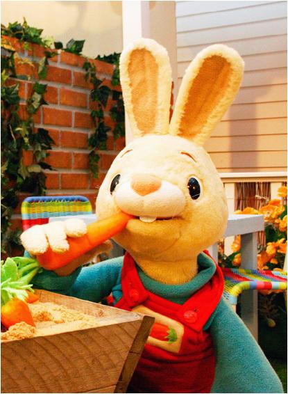 Harry the Bunny Birthday Invitations Harry the Bunny Harrythebunny Twitter