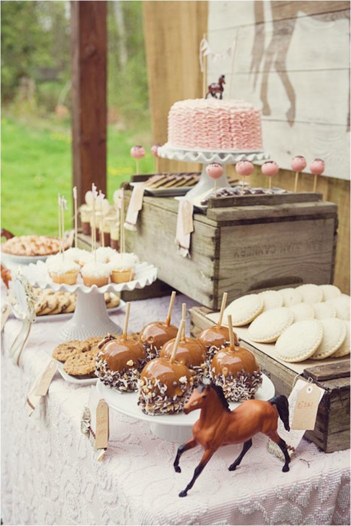 vintage pony themed 4th birthday party