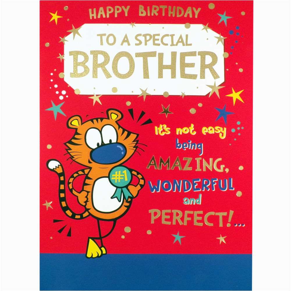 Humorous Birthday Cards for Brother Brother Birthday Card Funny Rude Humorous Greetings Card