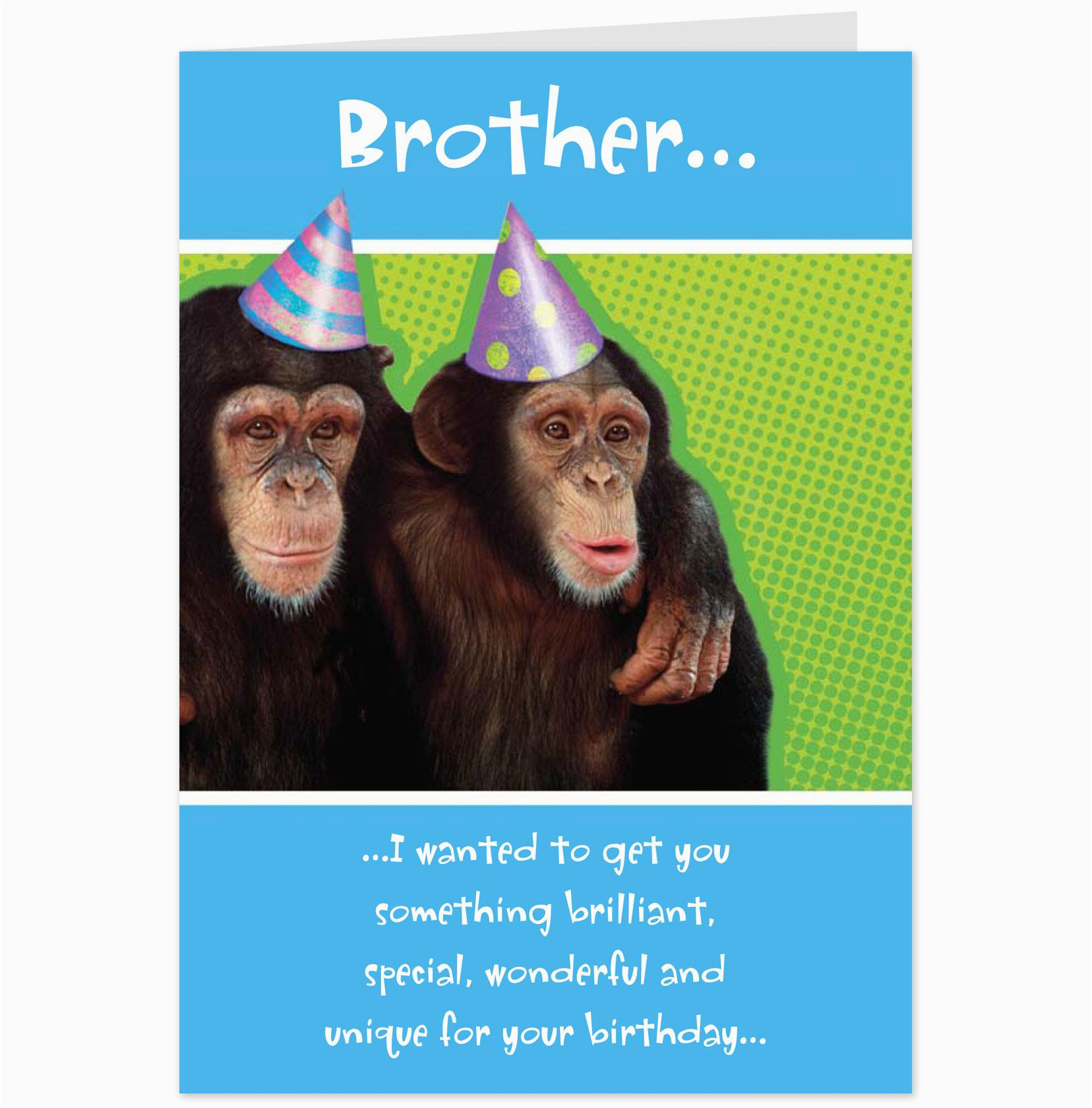 Humorous Birthday Cards For Brother Funny Quotes From Maxine Quotesgram