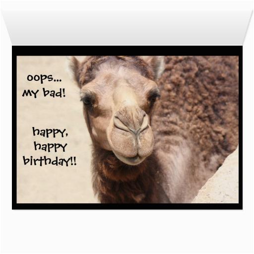 funny camel hump day birthday card 2 zazzle