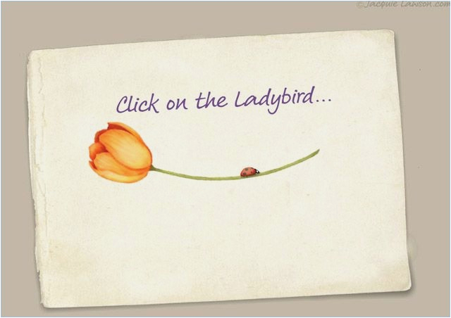 Jacquie Lawson Birthday Cards For Ipad Login Draestant Info