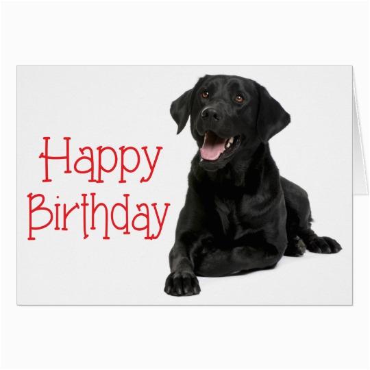 happy birthday fun card with labrador dog 137150455921955346
