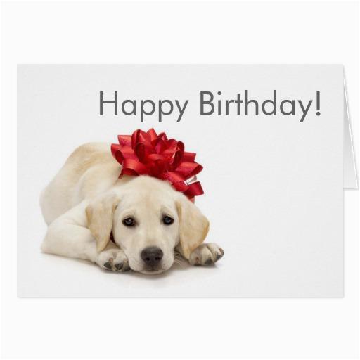 Labrador Birthday Cards Labrador Retriever Happy Birthday Card Zazzle