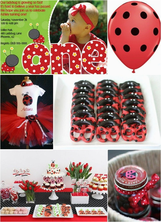 ideas for a ladybug first birthday party