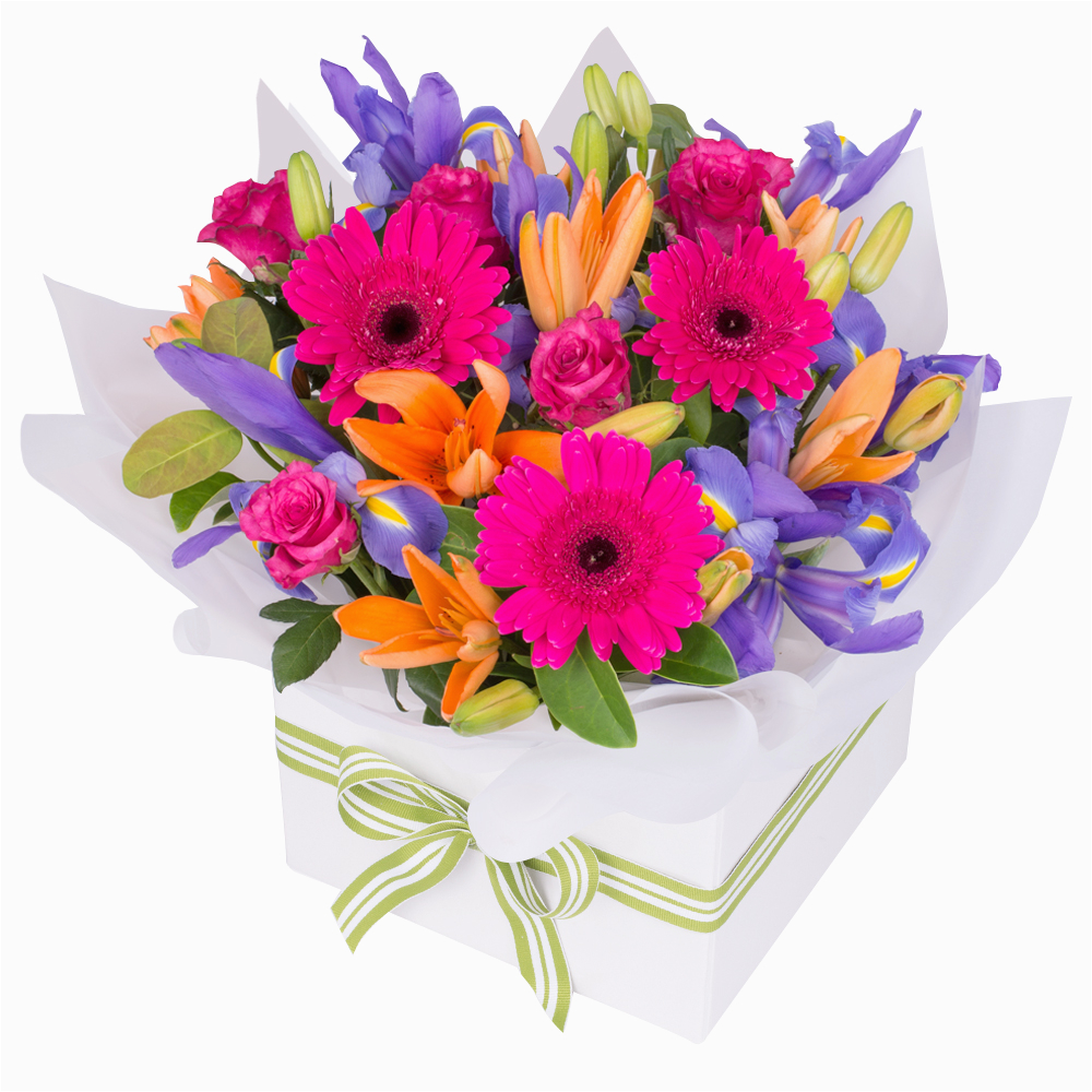 Male Birthday Flowers Flowers for Every Ocassion Florist Sydney