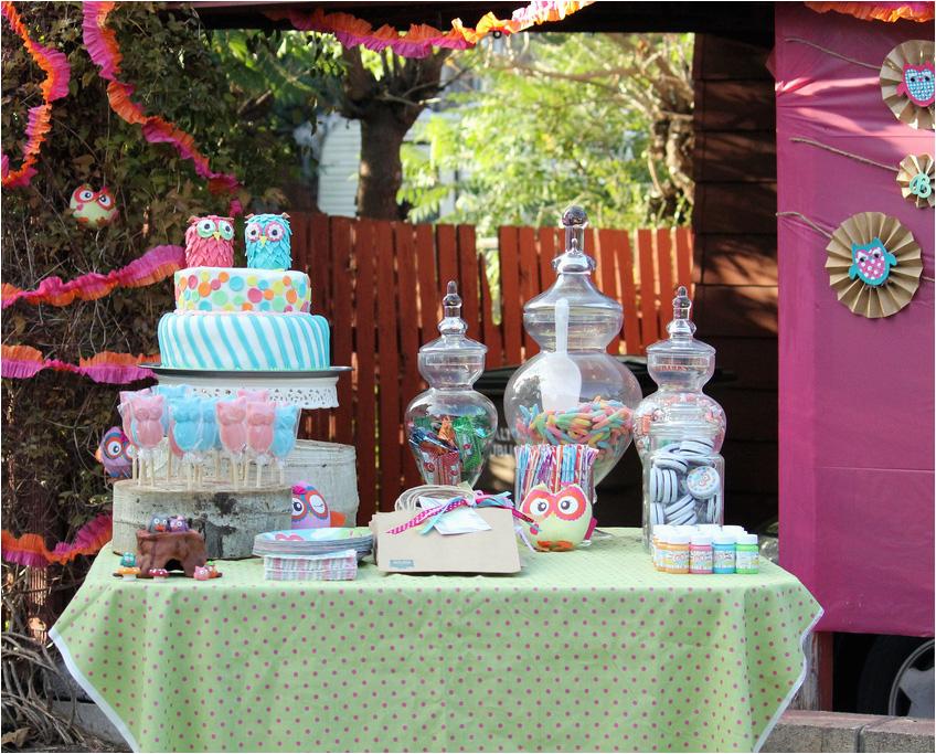 amazing owl birthday party