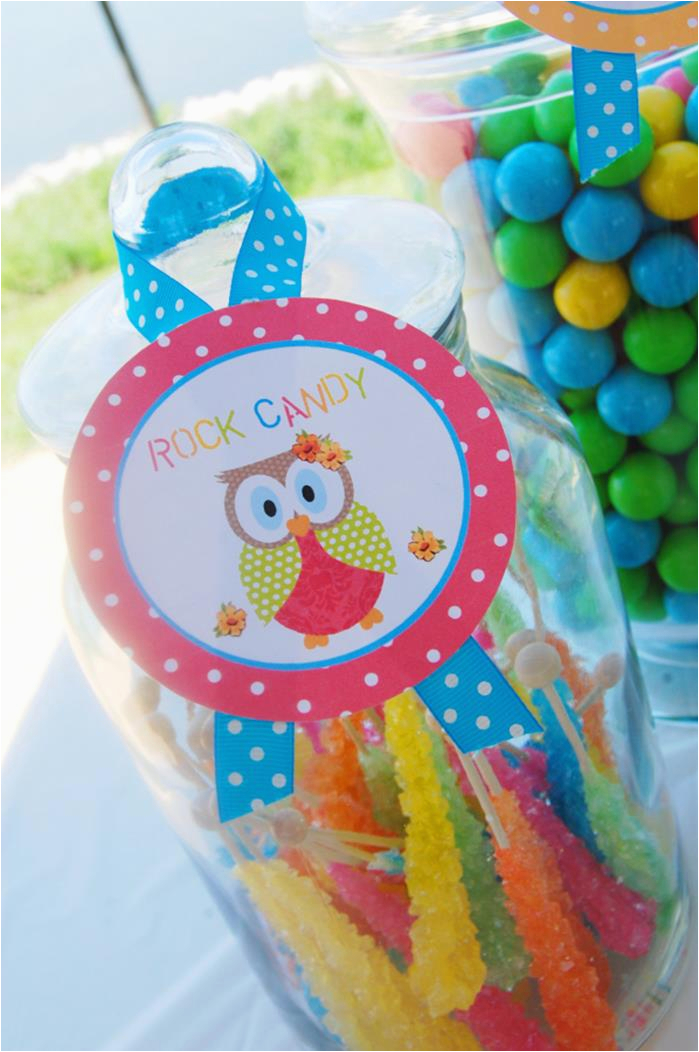 Owl First Birthday Decorations Kara 39 S Party Ideas Aloha Owl 1st Birthday Party Via Kara