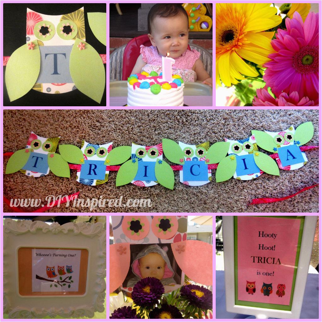 owl themed first birthday